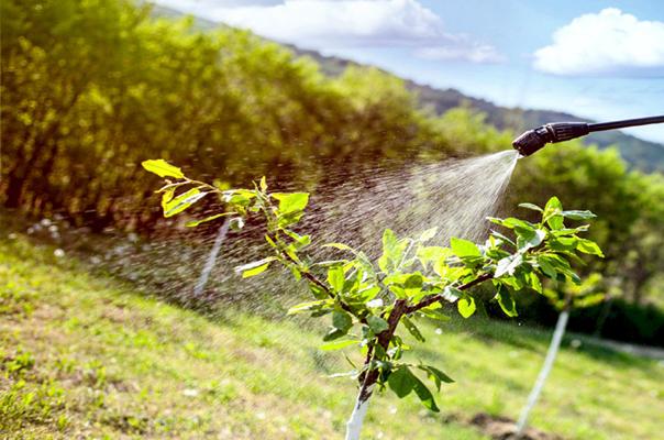 prodotti fitosanitari-csm-service-formazione